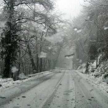Un par de meses despues, una tarde nevada de invierno, proveyo la respuesta. Jim habia viajado desde su casa en el sur de Texas, a un pequeño pueblo situado en las Montañas Rocosas de Colorado, para visitar a su hermano por la Navidad...