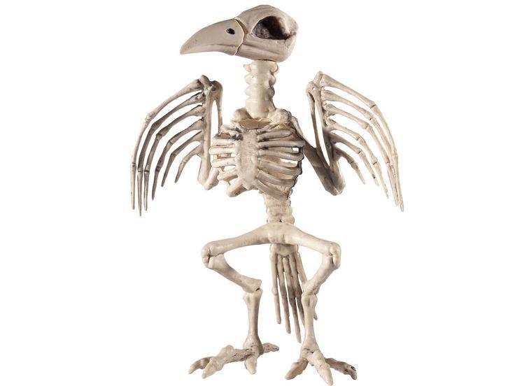 Skelett Rabe - - Ein Skelett ist schon ganz schön unheimlich, aber das Skelett eines Raben bringt auch noch Unglück! Perfekt für deine nächsten Halloween-Party!