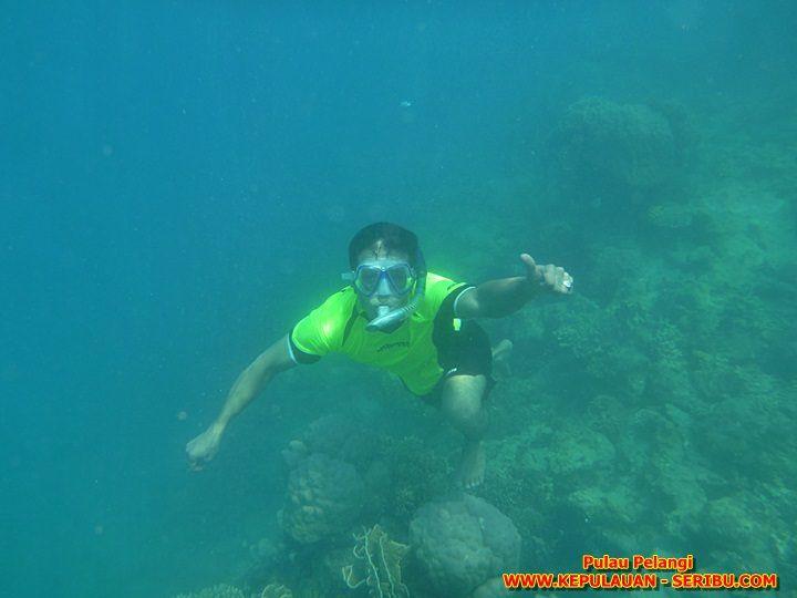 Snorkeling Wisata Pulau Pelangi