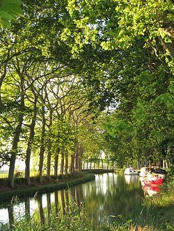Canal du Midi . Midi-Pyrénées, Languedoc-Roussillon