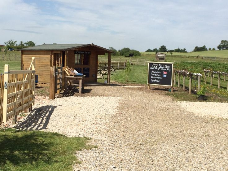 Pick Your Own at Cedarbarn Farm Shop & Cafe, Pickering, North Yorkshire