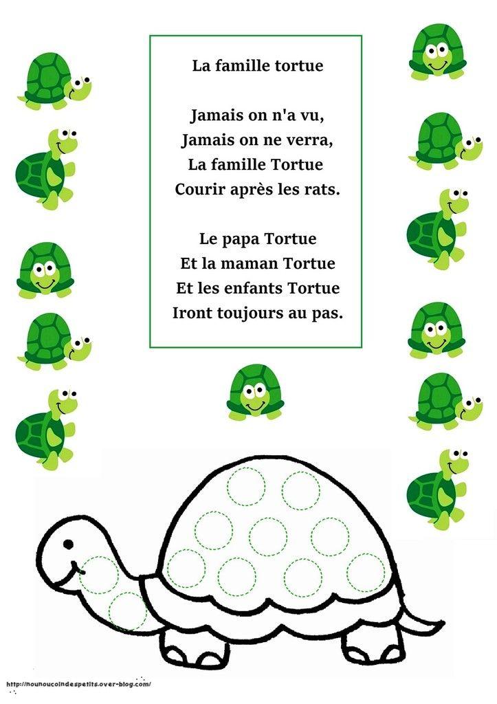 ".. Animaux .. "" la famille tortue """