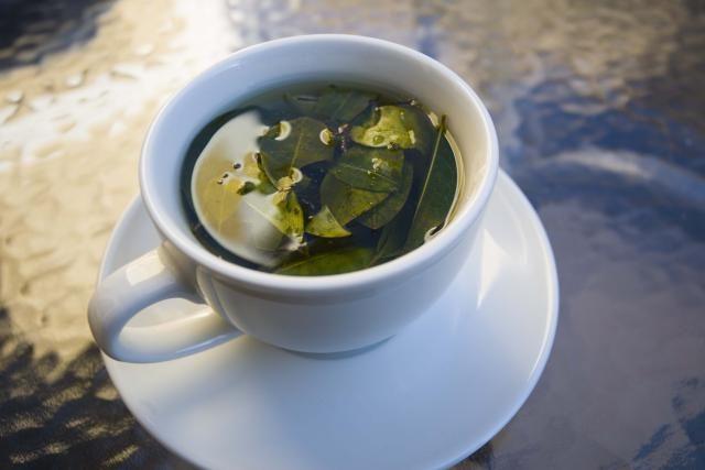 Infusión o té de coca. ¿Beneficioso o perjudicial? http://cafeyte.about.com/od/Tisanas-Y-T-E-De-Hierbas/ss/Infusioacuten-o-teacute-de-coca-iquestBeneficioso-o-toacutexico.htm