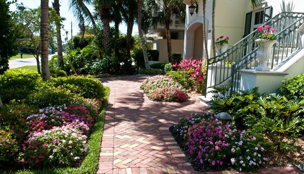 17 best images about landscaping on pinterest front Florida landscape design ideas