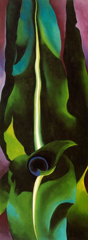 """Corn, Dark I, 1924, Georgia O'Keeffe (1887 – 1986).  """"O""""Keefe mostly straddled that strange zone between Expressionism and Abstract Expressionism (though she did cross the line occasionally).  Her paintings are highly stylized and emotional, and as many claim, rather vaginal.  Interestingly, O""""Keefe denied that her paintings had anything to do with female genitalia, which begs the question, is the audience projecting or iss the painter subconsciously embedding that idea?"""""""