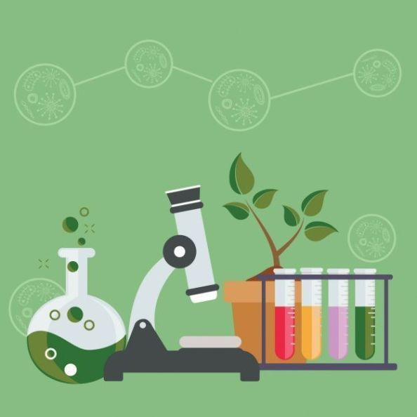 Curso Sobre Biotecnologia Decoracion Laboratorio De Ciencias Laboratorios De Ciencias Laboratorio De Biologia