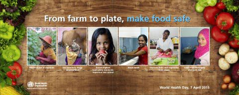 "'New data on the harm caused by foodborne illnesses underscore the global threats posed by unsafe foods, and the need for coordinated, cross-border action across the entire food supply chain, according to WHO,  World Health Day is celebrated today, 7 April, with WHO highlighting the challenges and opportunities associated with food safety under the slogan ""From farm to plate, make food safe."" ' World Health Day 2015: From farm to plate, make food safe:"