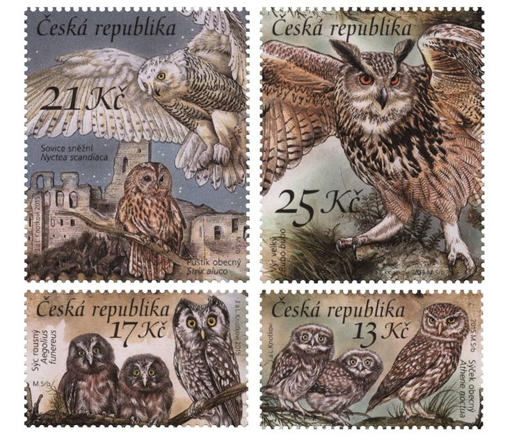 COLLECTORZPEDIA Owls