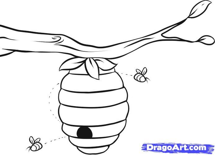 Tree Coloring Page With Bee Hive