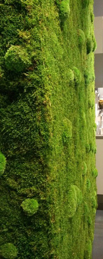 Stabilized #plant walls and #panels. No water, no sunlight, no soil, no leaves fall. #Vegetal range of approximately 50 stabilized #essences. Exclusively #handmade. #greenwalls #interior #design #architecture