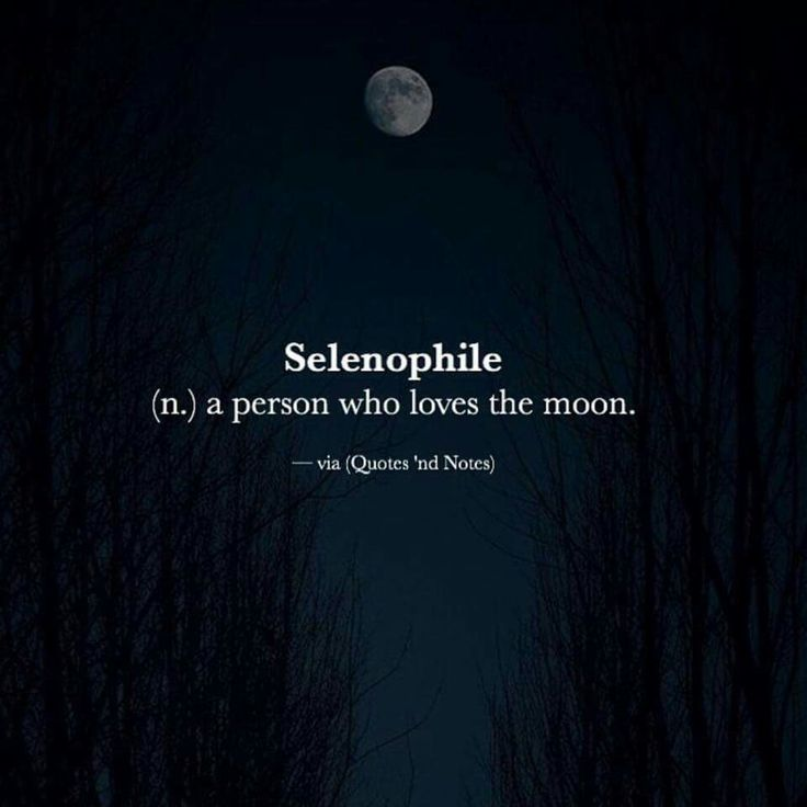 Selenophile (n.) A person who loves the moon. Image via (Quotes 'nd Notes)