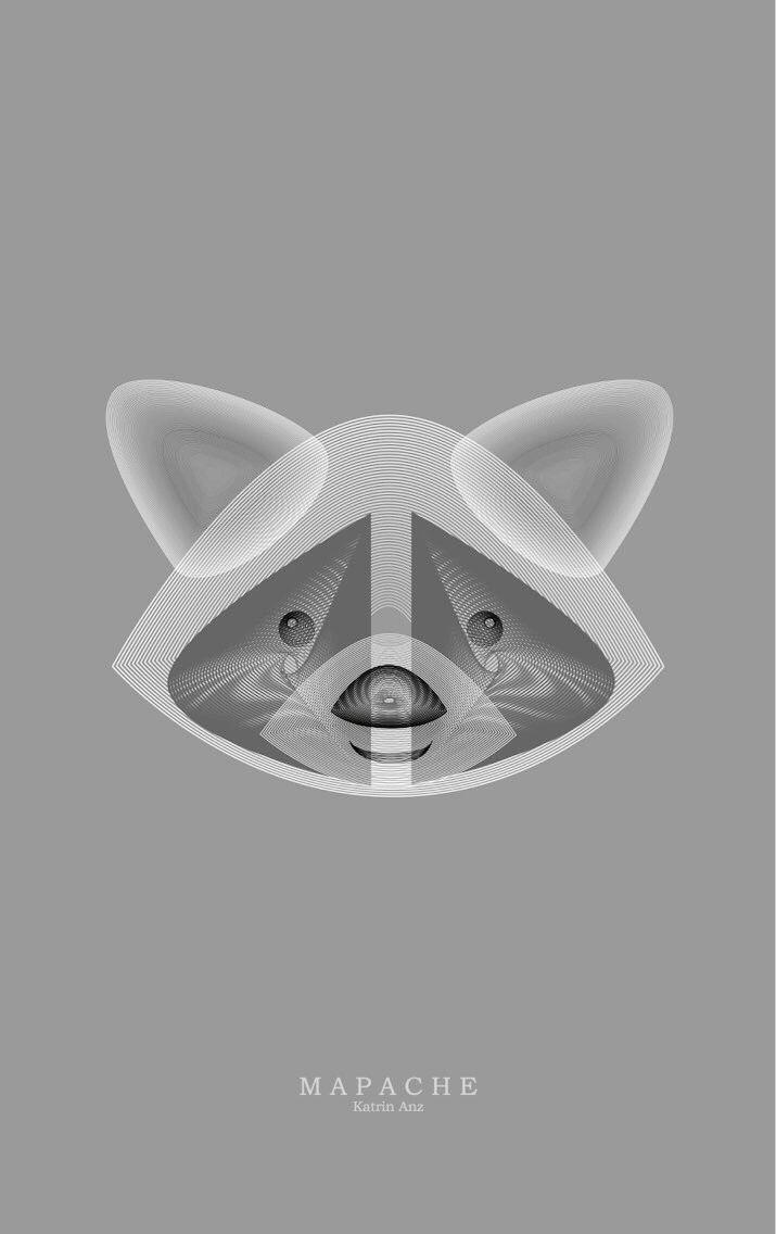 Diseño Katrin Anz #racoon #mapache #graphicdesign #ilustration #art