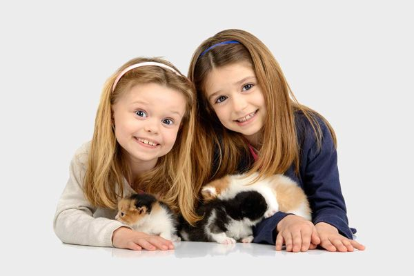 5 Ways You and Your Kids Can Get a Kitten Fix Without Having a Kitten | Catster
