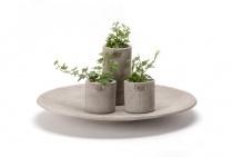 Διακοσμητικά αντικείμενα - Είδη σπιτιού - Fiori flowers design philosophy - Πρωτότυπα δώρα - online αγορές
