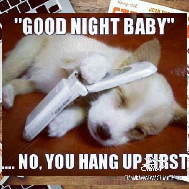 Untitled Good Night Funny Funny Good Night Images Good Night Meme