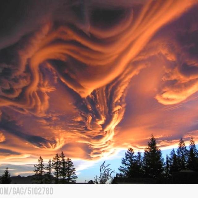 Clouds * * * * * * * * * * * * * * * * * * * * * * * * * * * * * * * * * * * * * * * * * * * * * * * * *