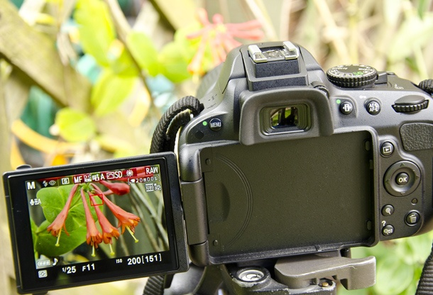 nikon d5100 guide for beginners