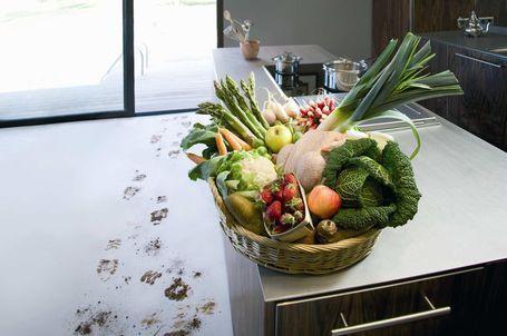 Envie de manger plus frais, plus goûteux, de consommer local, de connaître l'origine des aliments et la façon dont ils sont produits, de se réapproprier son alimentation...