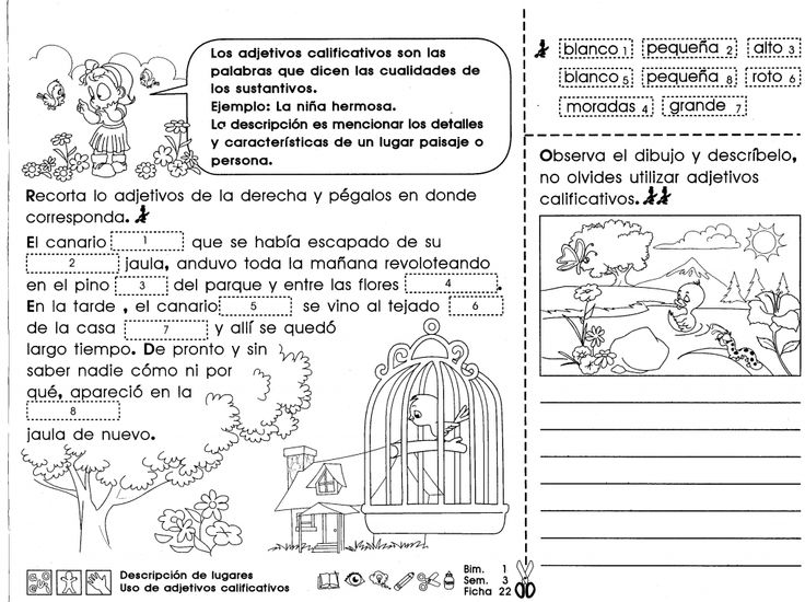 68 best Tercer grado images on Pinterest | Third grade, Learning and ...