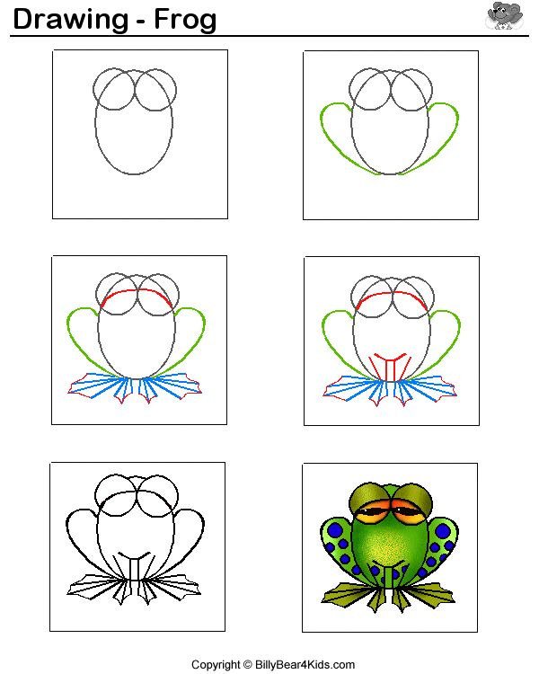 how to draw a tree frog easy