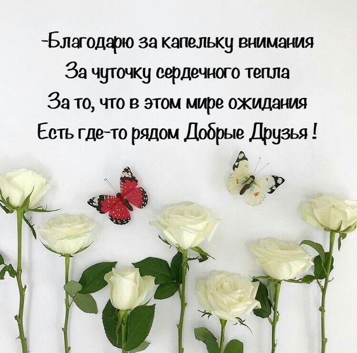 цитаты с поздравлениями