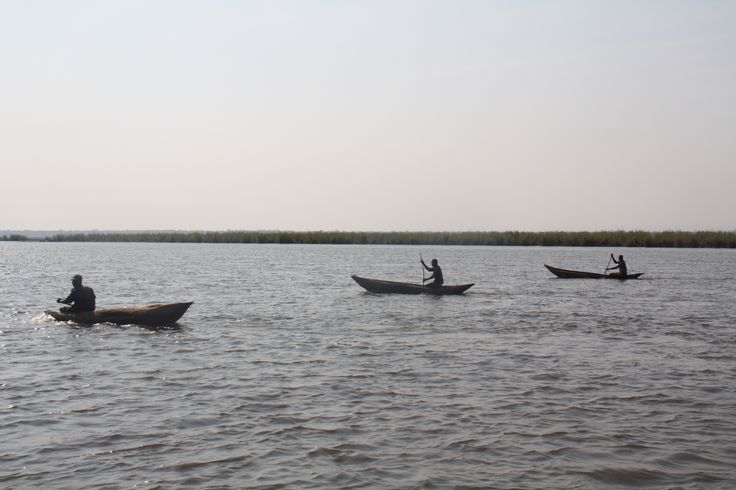 #Liwonde #National #Park #Malawi