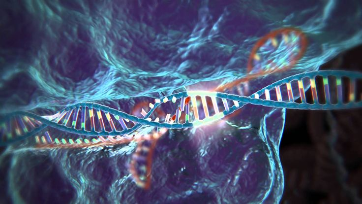 For a few hundred dollars, anyone can start doing genetic editing in the comfort…