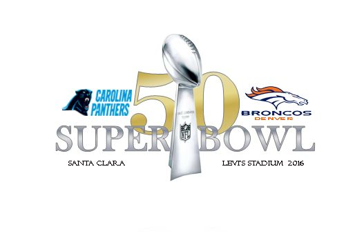 Denver Broncos - the champions of Super Bowl 50 ~ HeybiroBlog