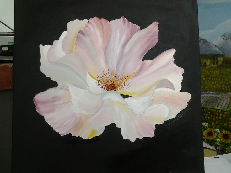 Rosa selvatica acrilico su tela