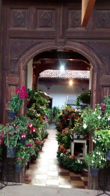 Patio de las flores. Mazamitla, Jalisco