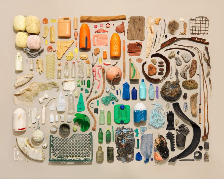 Oregon Beach Comber | Things Organized Neatly.  I don't see a single bit of sea glass.