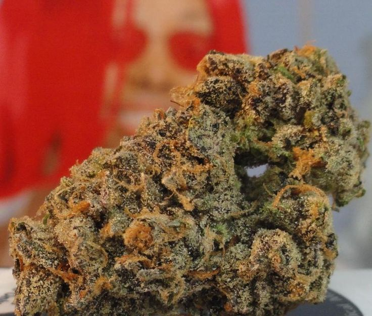 Cherry Pie | Hybrid Strains | Real Stoned Times