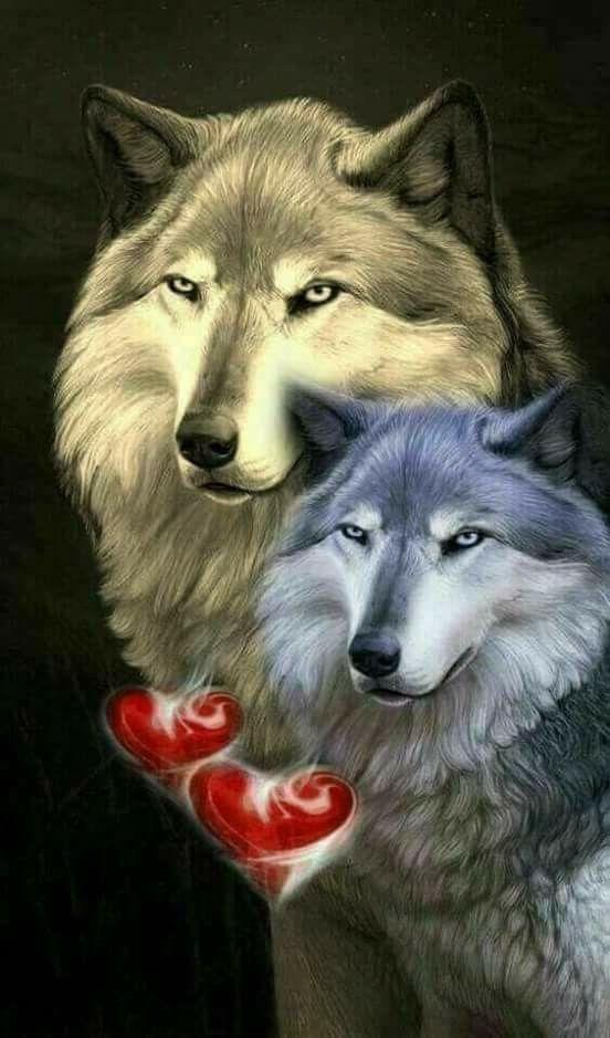 картинки с волками с чем-нибудь они