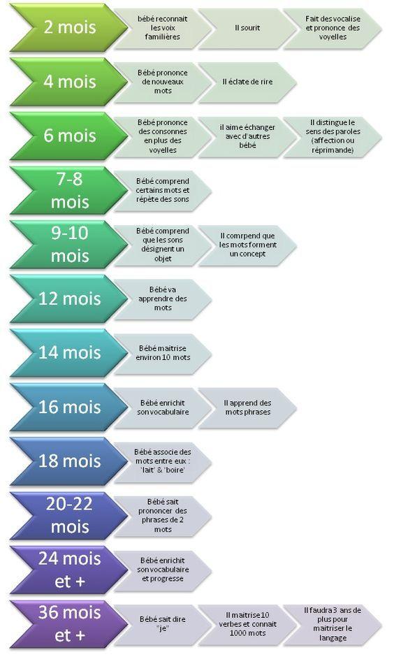 Evolution du langage chez le bébé et le jeune enfant:                                                                                                                                                     Plus