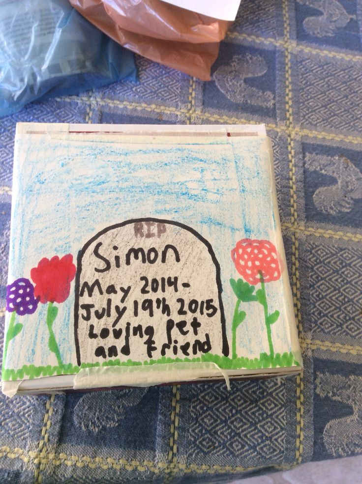 My hamster died so instead of making a grave stone i drew one. Good idea for kids