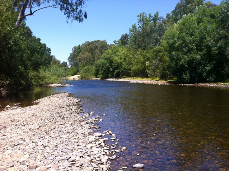 I'd take a swim in the river over the ocean any day!   Buffalo River, Myrtleford