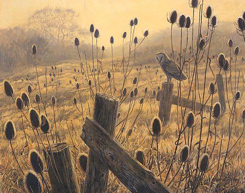 Barn Owl print by Martin Ridley #owl #art #painting
