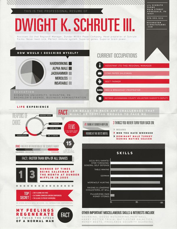 Elegant Visual CV Of Dwight Schrute | The Office | #TheOffice #jobgraphics