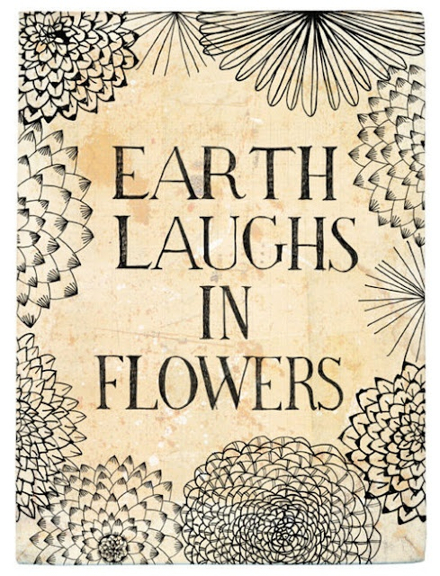 "Earth laughs in flowers."" -Emerson       I love this quote.  I love the idea that the Earth laughs, and when it does beautiful wild flowers spring forth to color our days.  When you see a flower today, think of it as the Earth laughing, and God smiling down on you."
