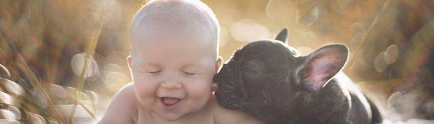 Un bebé y un bulldog francés creen que son hermanos