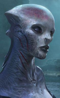 Aquatic Aliens | Waking The Merrow - dark, historical, mermaid fantasy available on ...