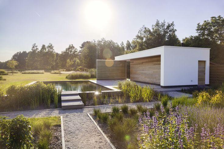 eric wouters tuinontwerp / modern poolhouse met zwemvijver, terras van gezandstraald beton