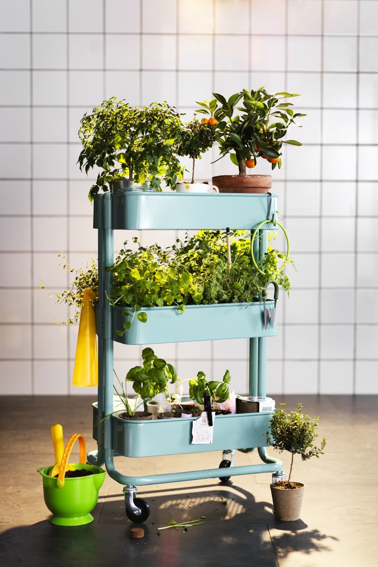 Create your own little garden on wheels with the IKEA RÅSKOG utility cart! There are three sections to store plants, flowers or herbs - and it's on wheels so you can bring it from your backyard to your kitchen or any other room of your home!