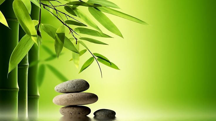Wallpaper Download 1920x1080 Bamboo tree and special rocks for massage…