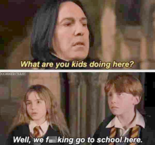 15 Harry Potter Memes That Will Make You Laugh Then Cry Potterhood Harry Potter Jokes Harry Potter Memes Harry Potter Fandom
