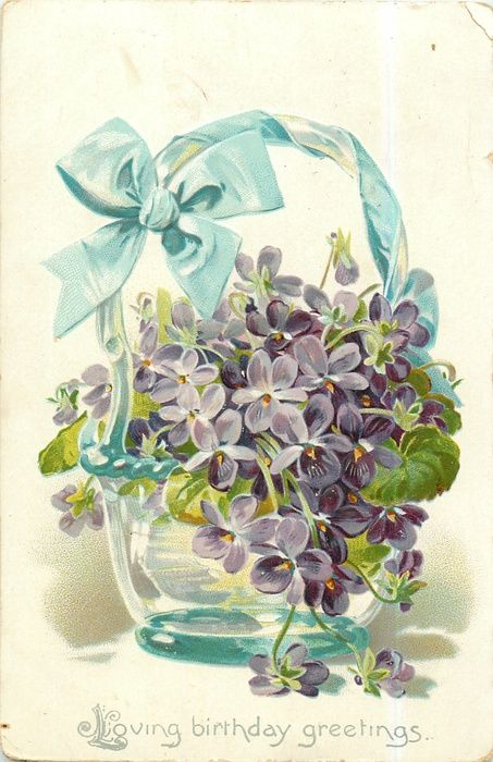 Violets in a clear vase, blue ribbon tied to handle, 1908 birthday postcard.