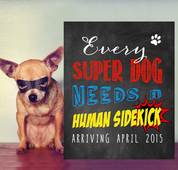 Every super dog needs a human sidekick sign - Pregnancy reveal chalkboard sign - Pregnancy Announcement pets - DIGITAL file!