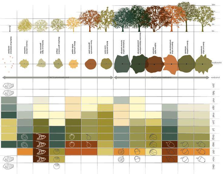 Go nuts ! Het bos is een menukaart voor het varken; 's zomers appel, peer en vlier, in het najaar eikels en noten en in de winter mispel en aardpeer. Inge Vleemingh