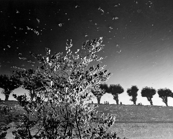 Sully sur Loire di Mimmo Jodice Anno: 1984