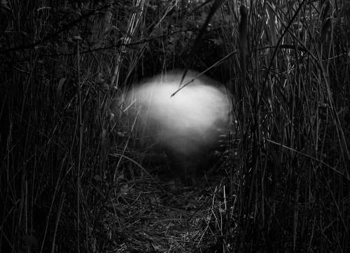Aleksei Kazantsev from the series 'Light Forms Grey Forms Dark Forms'